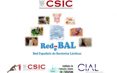 XIII Reunión de la Red Española de Bacterias Lácticas (RedBal) en el CIB-CSIC Madrid