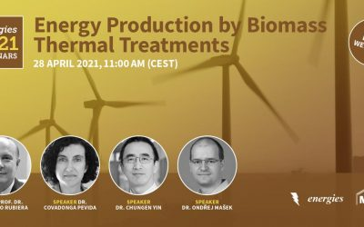 Energies Webinar | Energy Production by Biomass Thermal Treatments