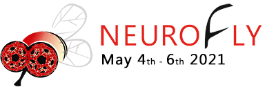 XX edición virtual del Neurofly