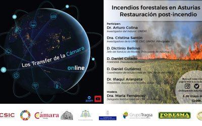 Transfer: Incendios forestales en Asturias I. Restauración post-incendio