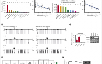 Epigenetic loss of m1A RNA demethylase ALKBH3 in Hodgkin lymphoma targets collagen, conferring poor clinical outcome