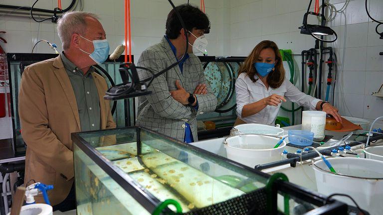 El Principado busca impulsar un consorcio de investigación sobre biodiversidad